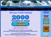 TrueBlue Traffic